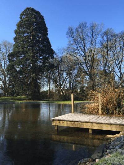 Ascot Pond